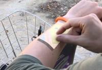 touchscreen-arm